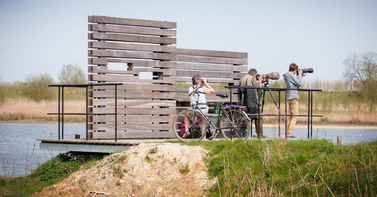 Oeverlopen in de Polders van Kruibeke | Vlaanderen Vakantieland