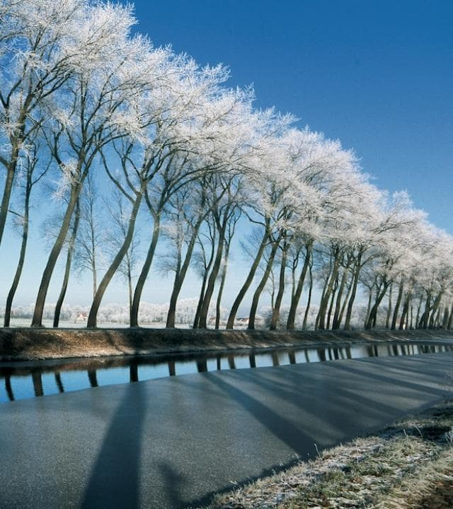 Damse Vaart in de winter